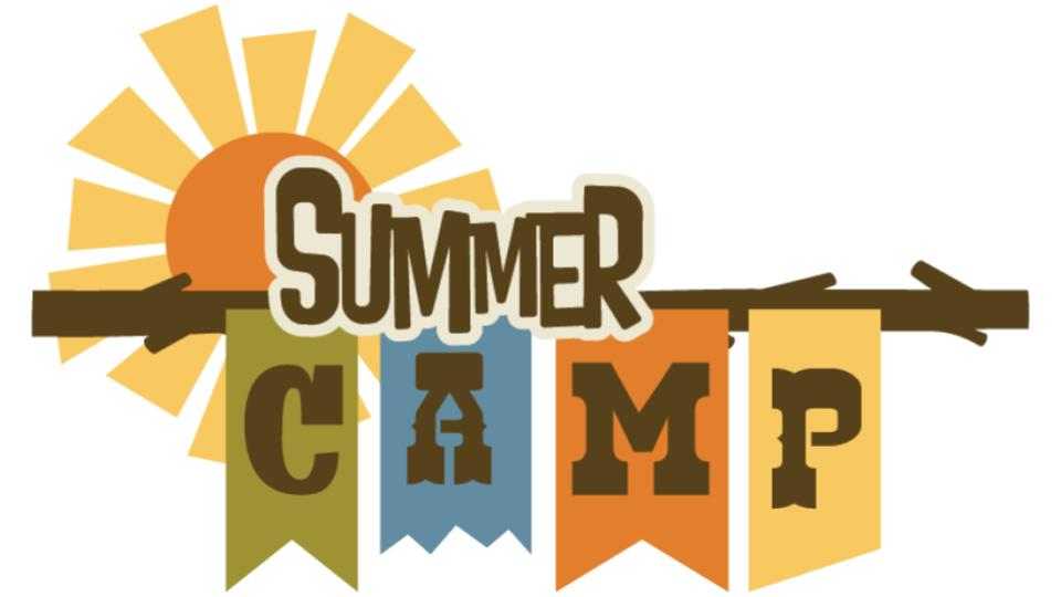 call for participation in the international summer liberal camp